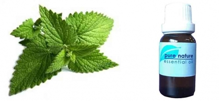 Pure Nature Peppermint Essential Oil