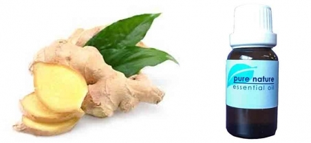 Pure Nature Ginger Root Essential Oil
